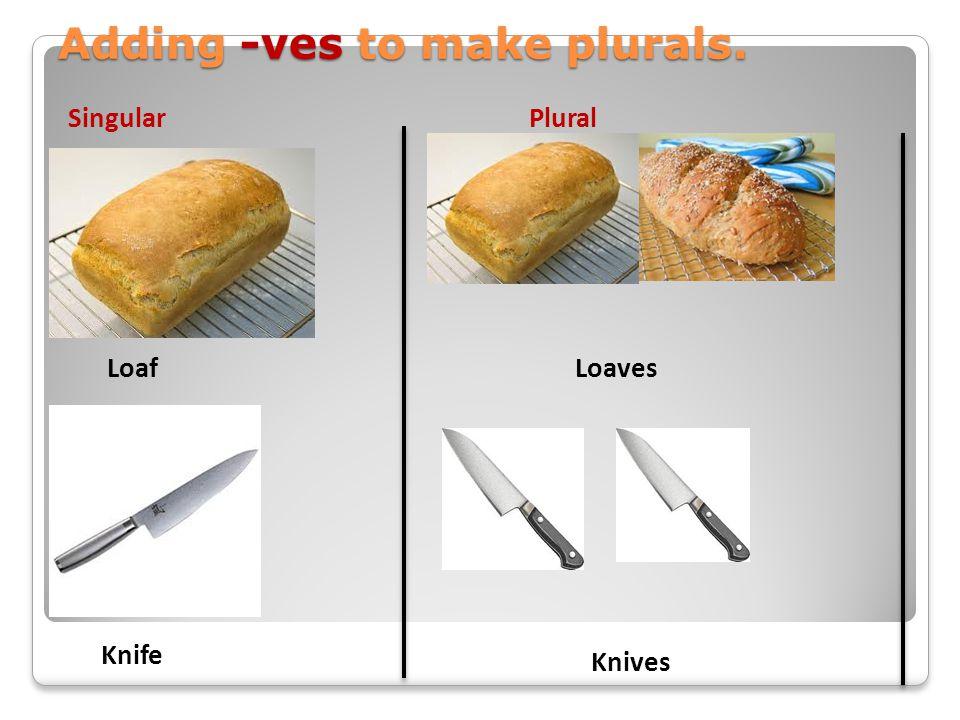 Adding -ves to make plurals. Loaf Knife Loaves Knives SingularPlural