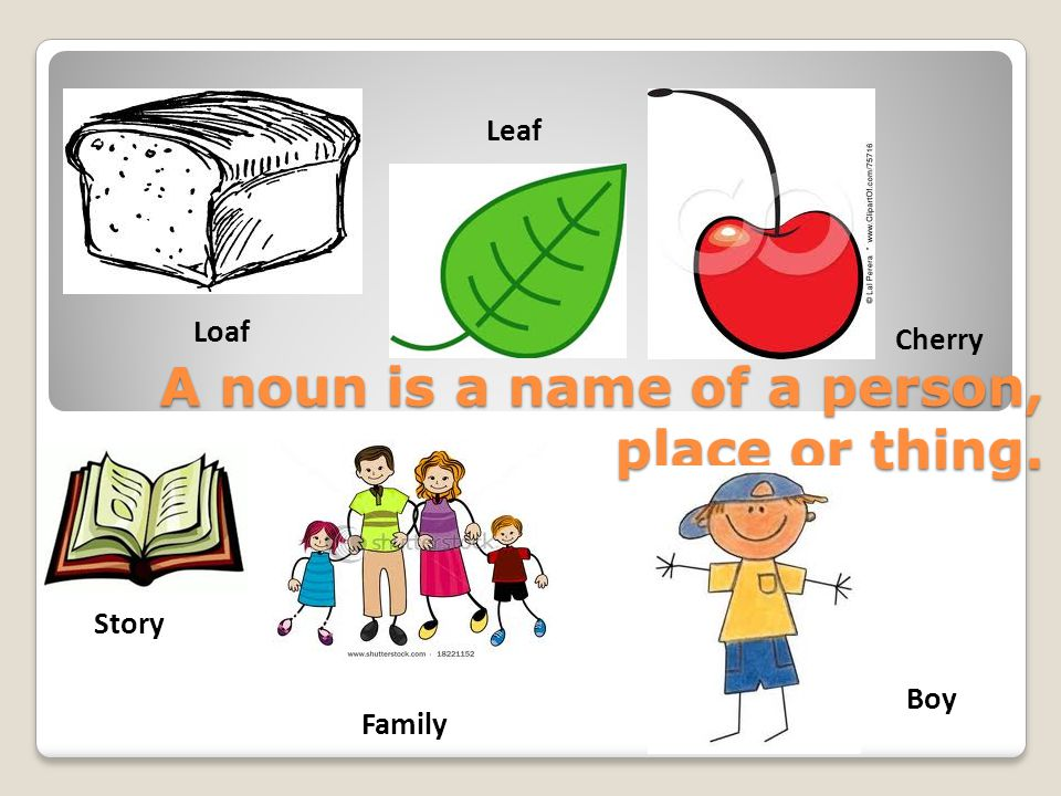 A noun is a name of a person, place or thing. Loaf Leaf Family Story Cherry Boy