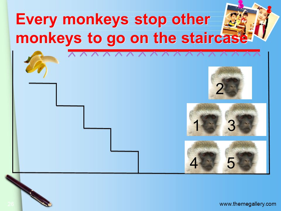 www.themegallery.com Every monkeys stop other monkeys to go on the staircase 26 13 2 45