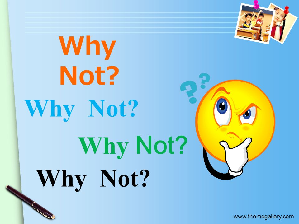 www.themegallery.com Why Not Why  Not Why Not Why  Not