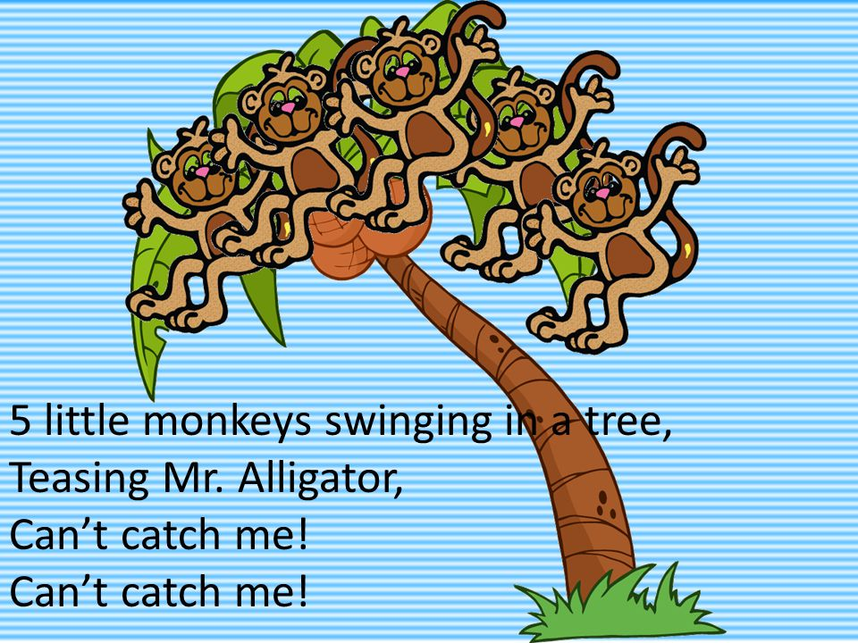 5 little monkeys swinging in a tree, Teasing Mr. Alligator, Can't catch me!