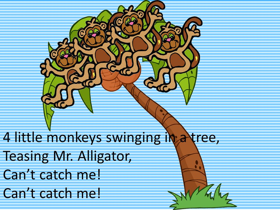 4 little monkeys swinging in a tree, Teasing Mr. Alligator, Can't catch me!