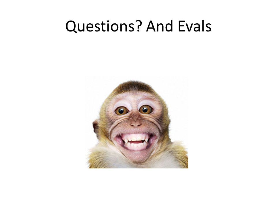Questions? And Evals