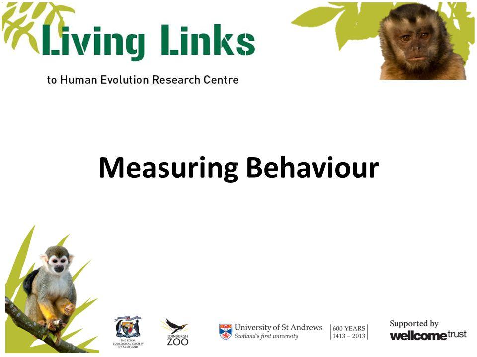 Let's Try a Focal Living Links website - http://www.living-links.org/resources/materials-for- teachers/measuring-behaviour-lesson-plan/http://www.living-links.org/resources/materials-for- teachers/measuring-behaviour-lesson-plan/ Vimeo - http://vimeo.com/13796260http://vimeo.com/13796260 SCREEN SHOT ONLY