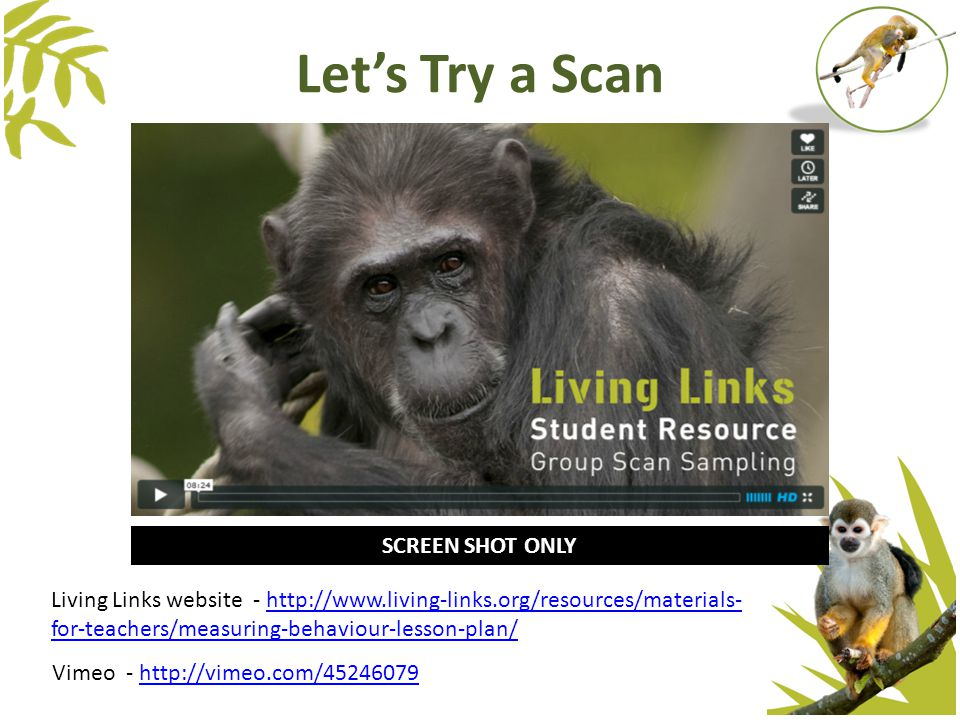 Let's Try a Scan Living Links website - http://www.living-links.org/resources/materials- for-teachers/measuring-behaviour-lesson-plan/http://www.livin