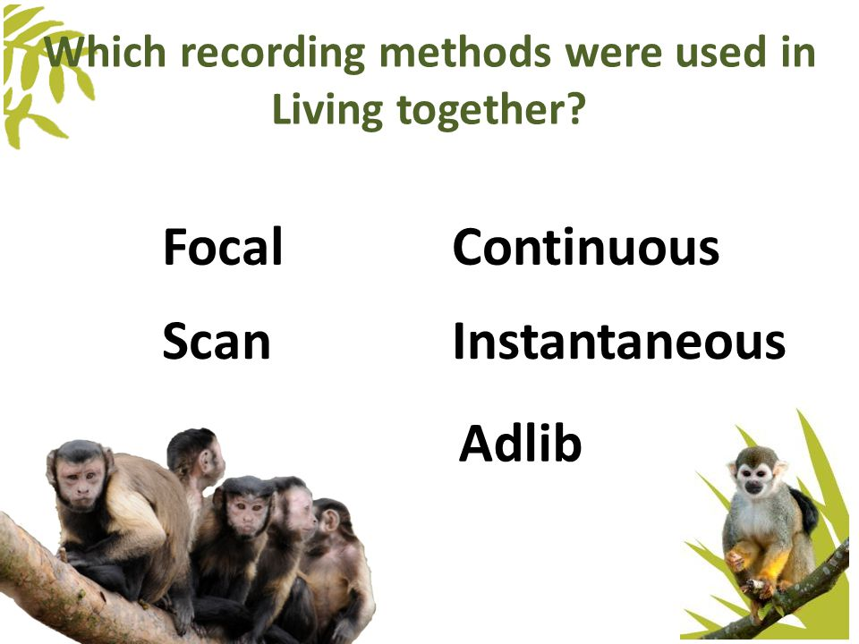 Which recording methods were used in Living together InstantaneousScan ContinuousFocal Adlib