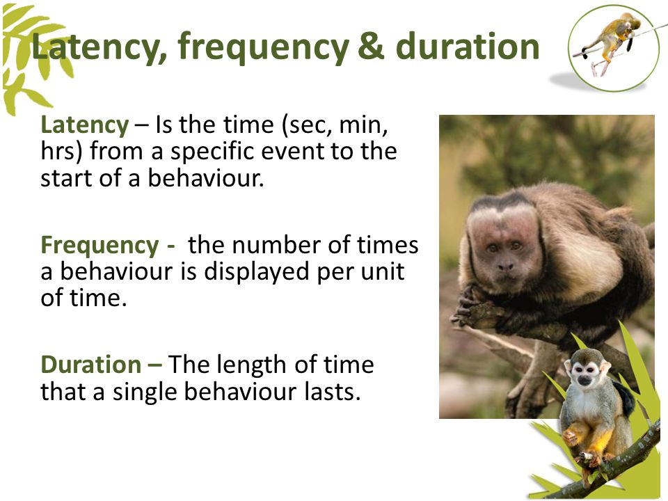 Latency – Is the time (sec, min, hrs) from a specific event to the start of a behaviour.