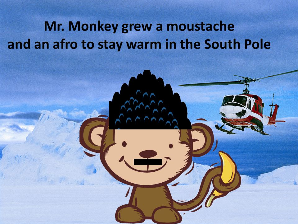 Mr. Monkey grew a moustache and an afro to stay warm in the South Pole