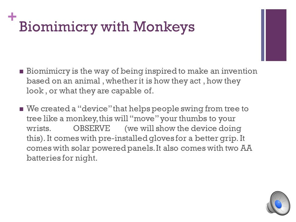 + Biomimicry with Monkeys Biomimicry is the way of being inspired to make an invention based on an animal, whether it is how they act, how they look, or what they are capable of.