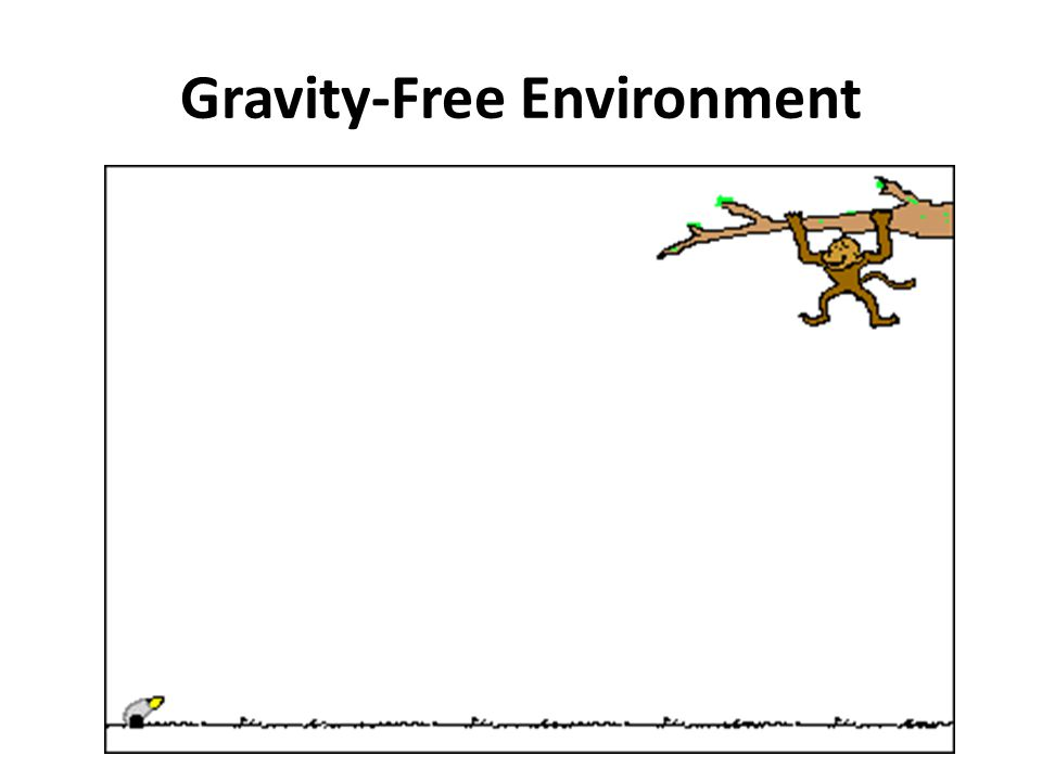Gravity-Free Environment