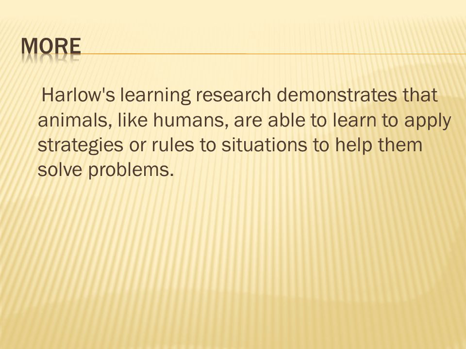 Harlow s learning research demonstrates that animals, like humans, are able to learn to apply strategies or rules to situations to help them solve problems.