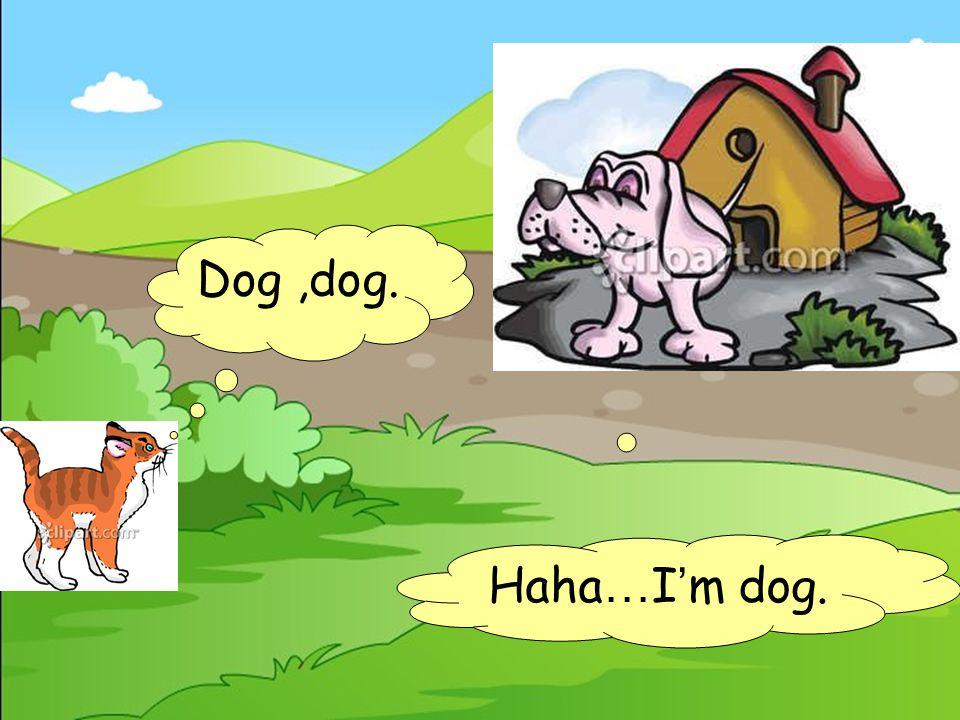 Dog,dog. No,I ' m panda.