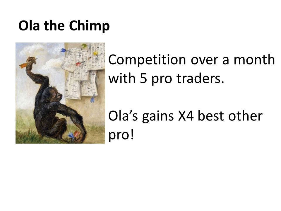 Ola the Chimp Competition over a month with 5 pro traders. Ola's gains X4 best other pro!