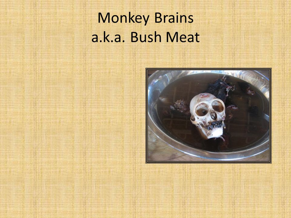 Monkey Brains a.k.a. Bush Meat