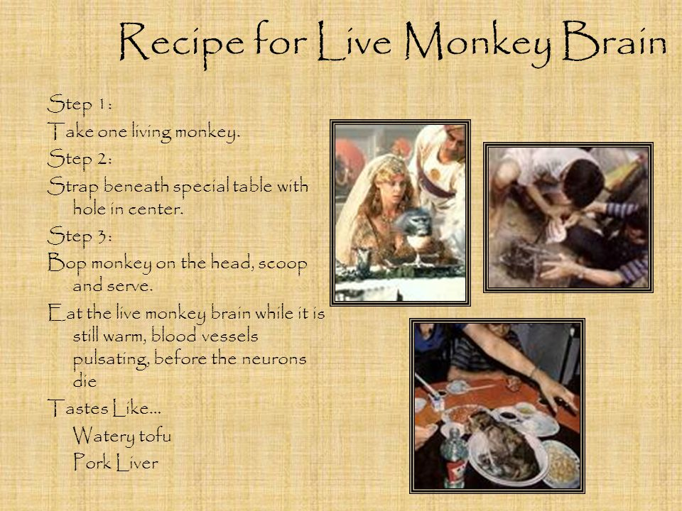 Recipe for Live Monkey Brain Step 1: Take one living monkey.