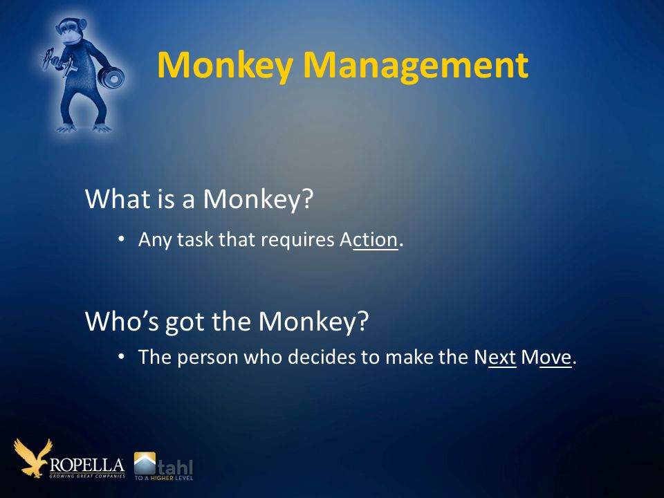Monkey Management What is a Monkey. Any task that requires Action.