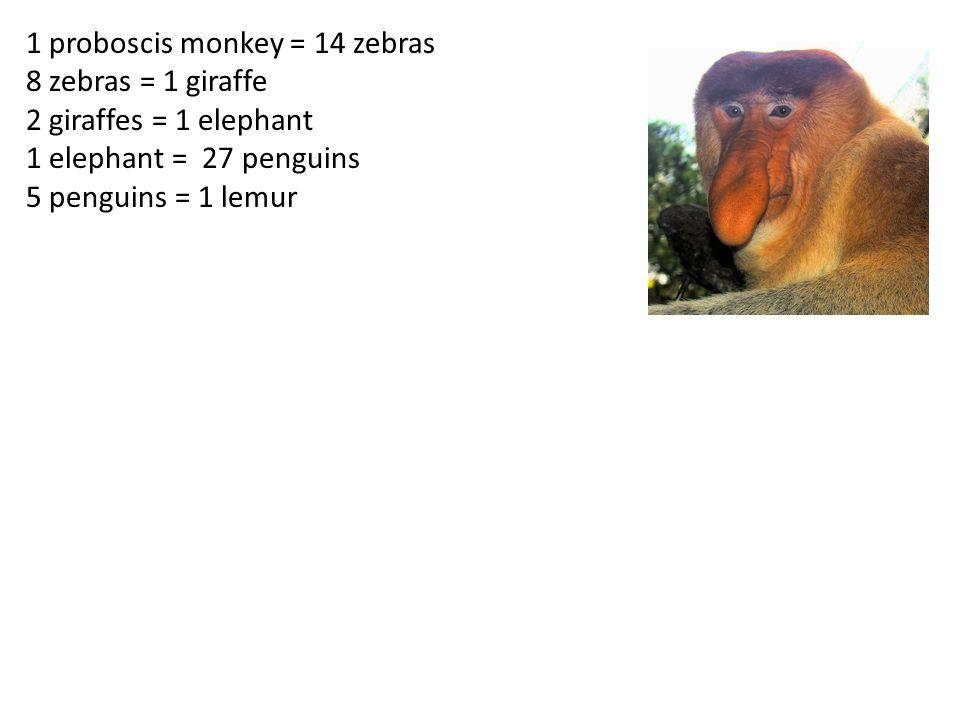 1 proboscis monkey = 14 zebras 8 zebras = 1 giraffe 2 giraffes = 1 elephant 1 elephant = 27 penguins 5 penguins = 1 lemur