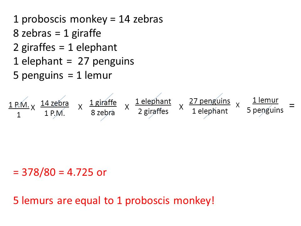 1 proboscis monkey = 14 zebras 8 zebras = 1 giraffe 2 giraffes = 1 elephant 1 elephant = 27 penguins 5 penguins = 1 lemur = 378/80 = 4.725 or 5 lemurs are equal to 1 proboscis monkey.