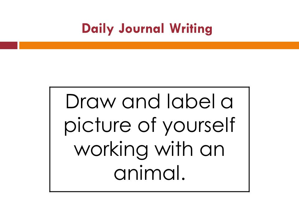 Daily Journal Writing Draw and label a picture of yourself working with an animal.