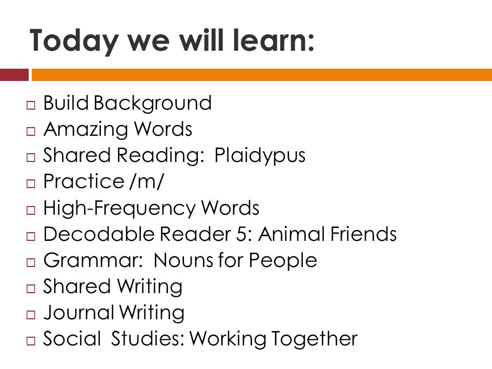Today we will learn:  Build Background  Amazing Words  Shared Reading: Plaidypus  Practice /m/  High-Frequency Words  Decodable Reader 5: Animal Friends  Grammar: Nouns for People  Shared Writing  Journal Writing  Social Studies: Working Together