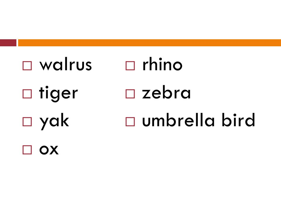  walrus  tiger  yak  ox  rhino  zebra  umbrella bird