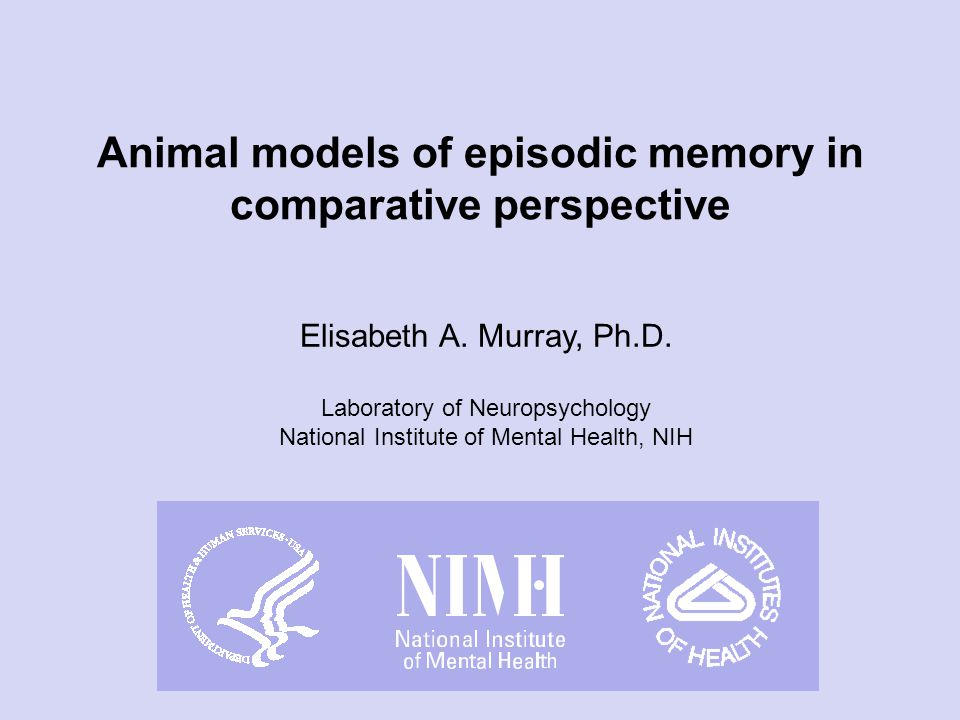 The orthodox monkey model of memory was born: Monkeys and humans have inherited a medial temporal lobe memory system from their LCA This system includes the episodic memory mechanism How did this orthodoxy come about?