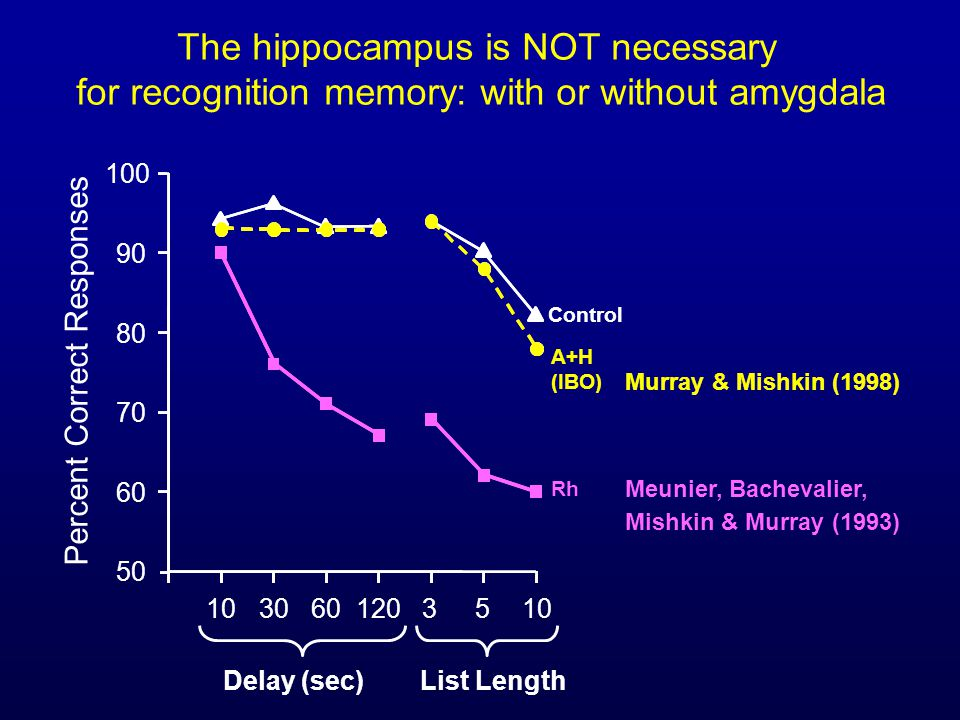 The hippocampus is NOT necessary for recognition memory: with or without amygdala A+H (IBO) Control Murray & Mishkin (1998) 1030601203510 Percent Correct Responses 50 60 70 80 90 100 List LengthDelay (sec) Meunier, Bachevalier, Mishkin & Murray (1993) Rh