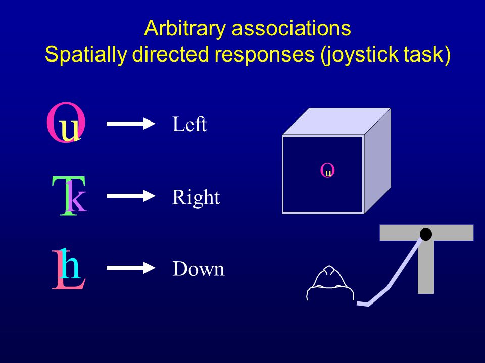 O Arbitrary associations Spatially directed responses (joystick task) u O u T k L h Left Right Down