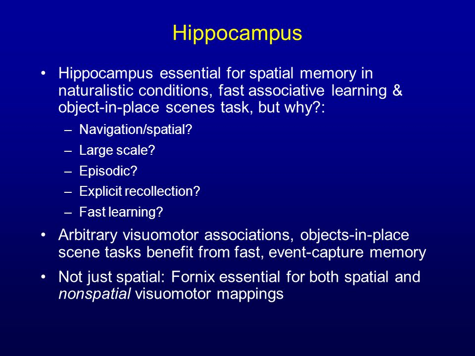 Hippocampus Hippocampus essential for spatial memory in naturalistic conditions, fast associative learning & object-in-place scenes task, but why?: –Navigation/spatial.