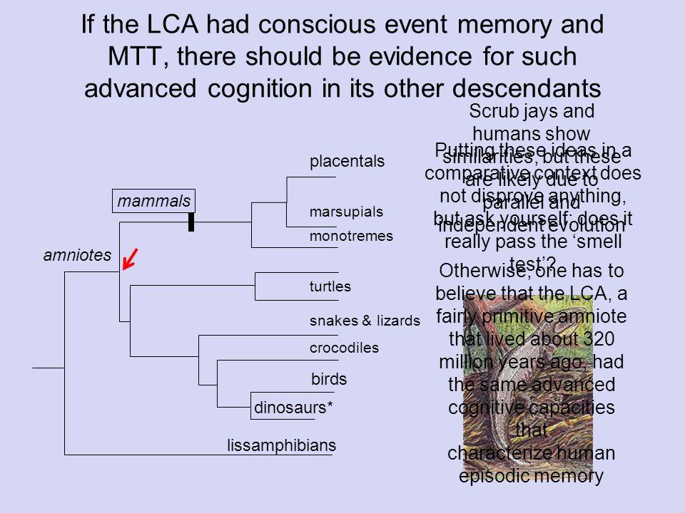 O Arbitrary associations Spatially directed responses (joystick task) u O u T k L h Left Right Down