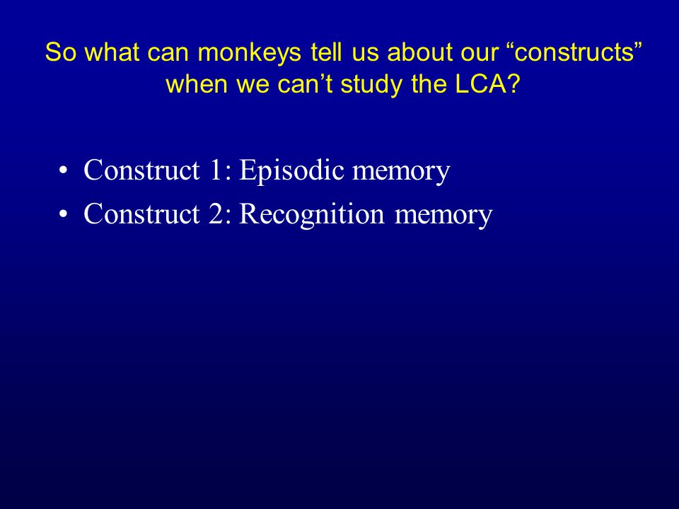 So what can monkeys tell us about memory when we can't study the LCA.