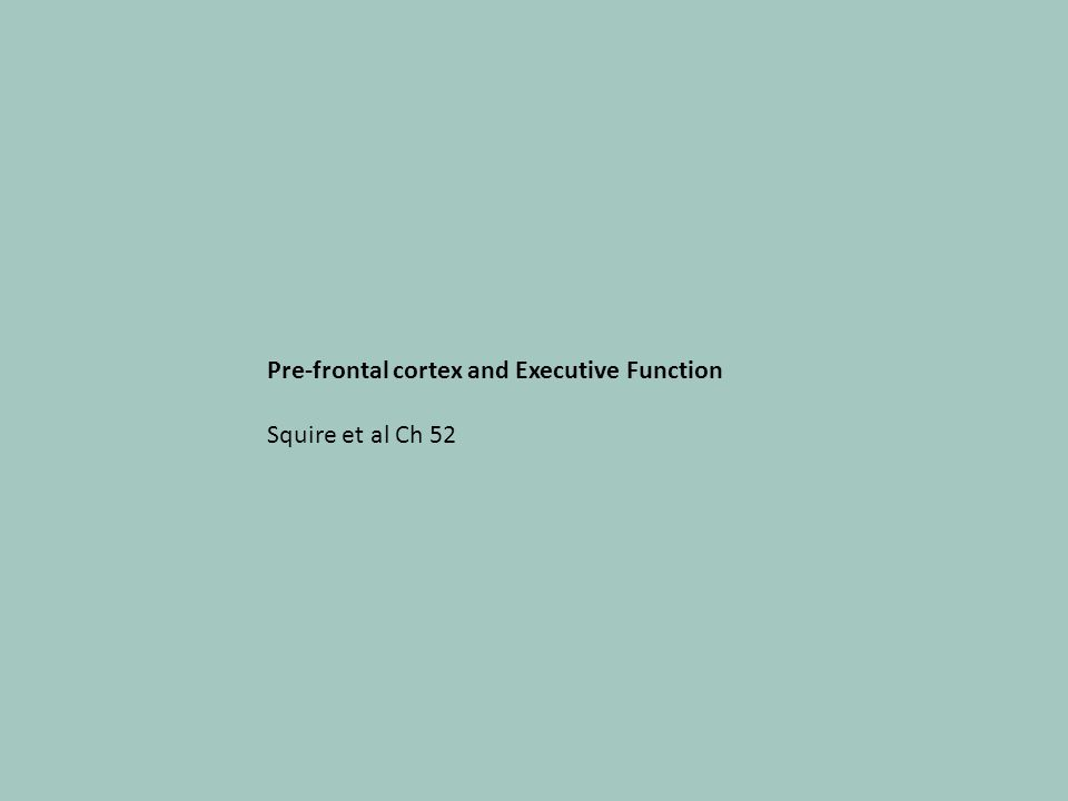 Pre-frontal cortex and Executive Function Squire et al Ch 52