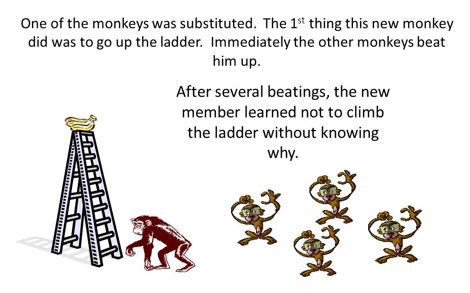 After some time, no monkey dared to go up the ladder regardless of the temptation.