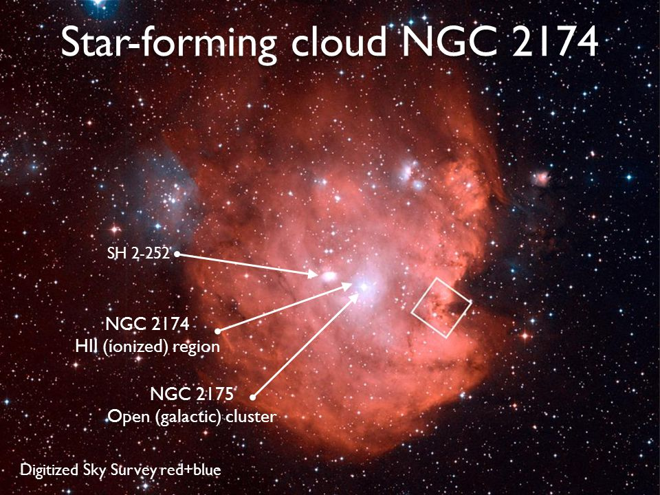 7 Star-forming cloud NGC 2174 NGC 2175 Open (galactic) cluster NGC 2174 HII (ionized) region Digitized Sky Survey red+blue SH 2-252