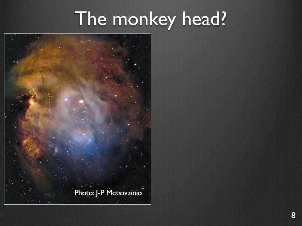The monkey head? 9