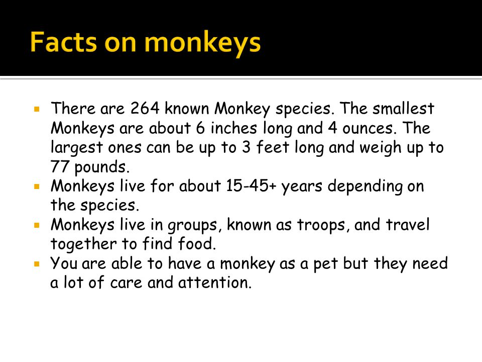  There are 264 known Monkey species.The smallest Monkeys are about 6 inches long and 4 ounces.