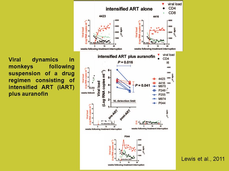 Viral dynamics in monkeys following suspension of a drug regimen consisting of intensified ART (iART) plus auranofin