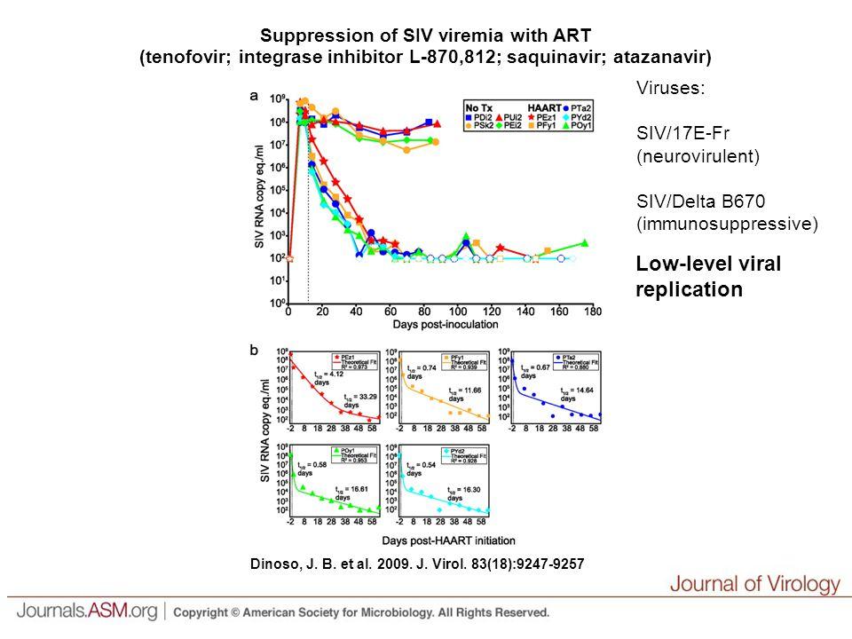 Dinoso, J. B. et al. 2009. J. Virol.