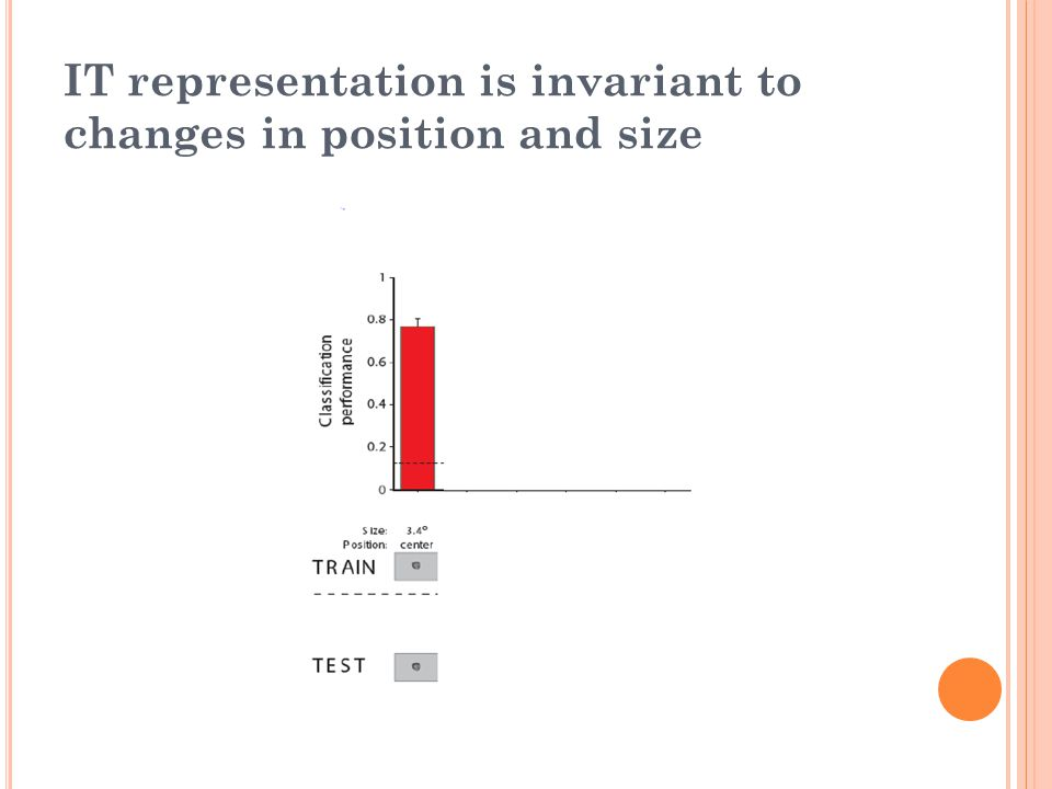 IT representation is invariant to changes in position and size