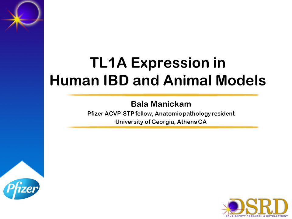 TL1A Expression in Human IBD and Animal Models Bala Manickam Pfizer ACVP-STP fellow, Anatomic pathology resident University of Georgia, Athens GA