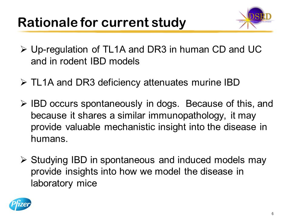 Rationale for current study  Up-regulation of TL1A and DR3 in human CD and UC and in rodent IBD models  TL1A and DR3 deficiency attenuates murine IBD  IBD occurs spontaneously in dogs.