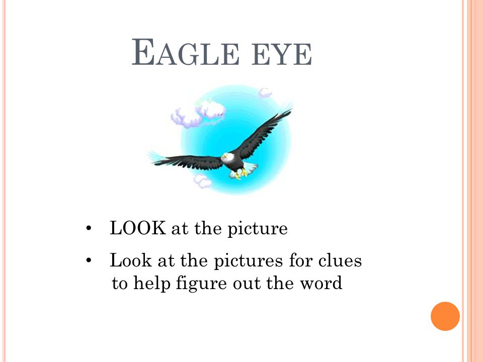 E AGLE EYE LOOK at the picture Look at the pictures for clues to help figure out the word