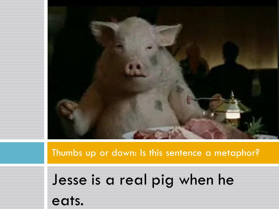 Jesse is a real pig when he eats. Thumbs up or down: Is this sentence a metaphor?