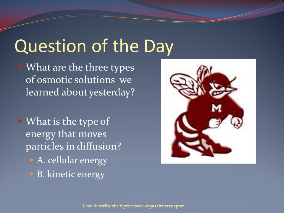 Question of the Day What are the three types of osmotic solutions we learned about yesterday.
