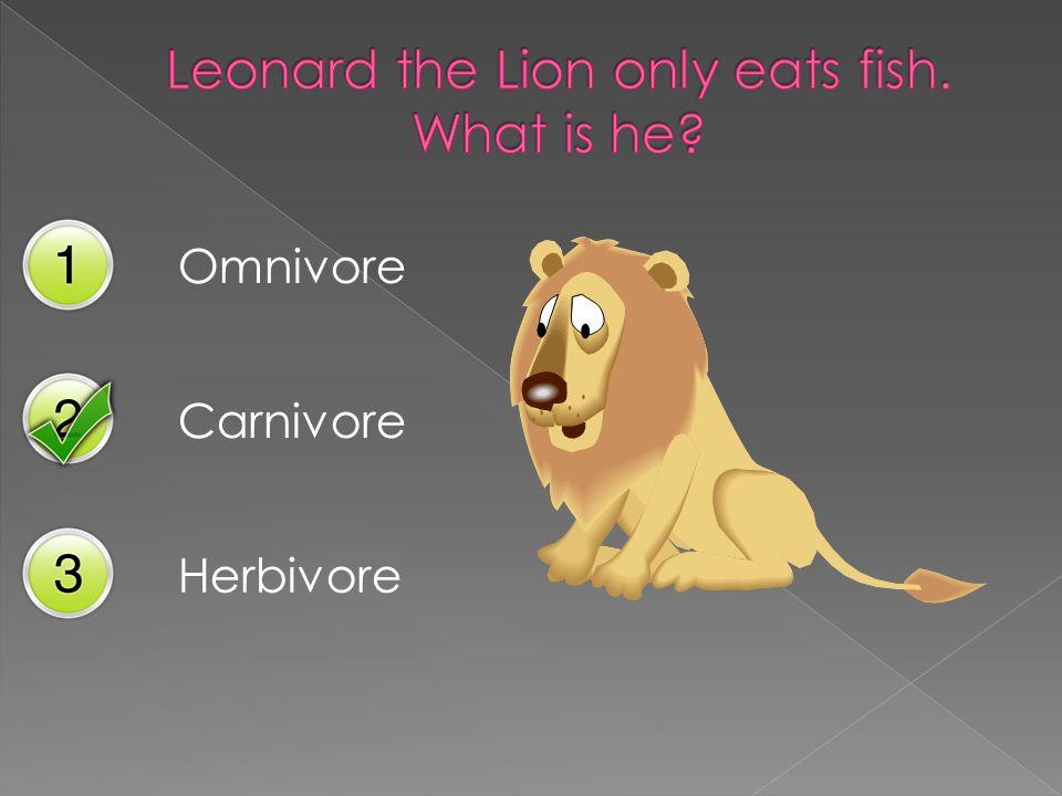 Omnivore Carnivore Herbivore