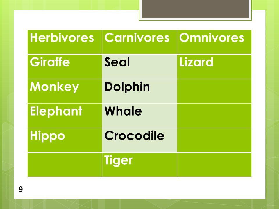HerbivoresCarnivoresOmnivores GiraffeSealLizard MonkeyDolphin ElephantWhale HippoCrocodile Tiger 9