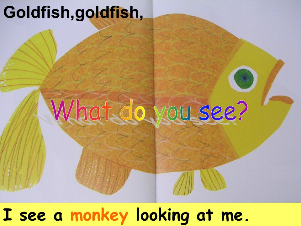 Goldfish,goldfish, I see a monkey looking at me.
