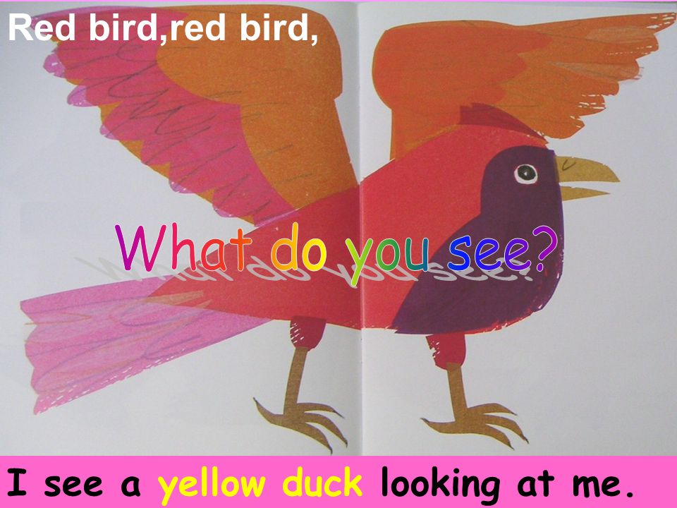 Red bird,red bird, I see a yellow duck looking at me.