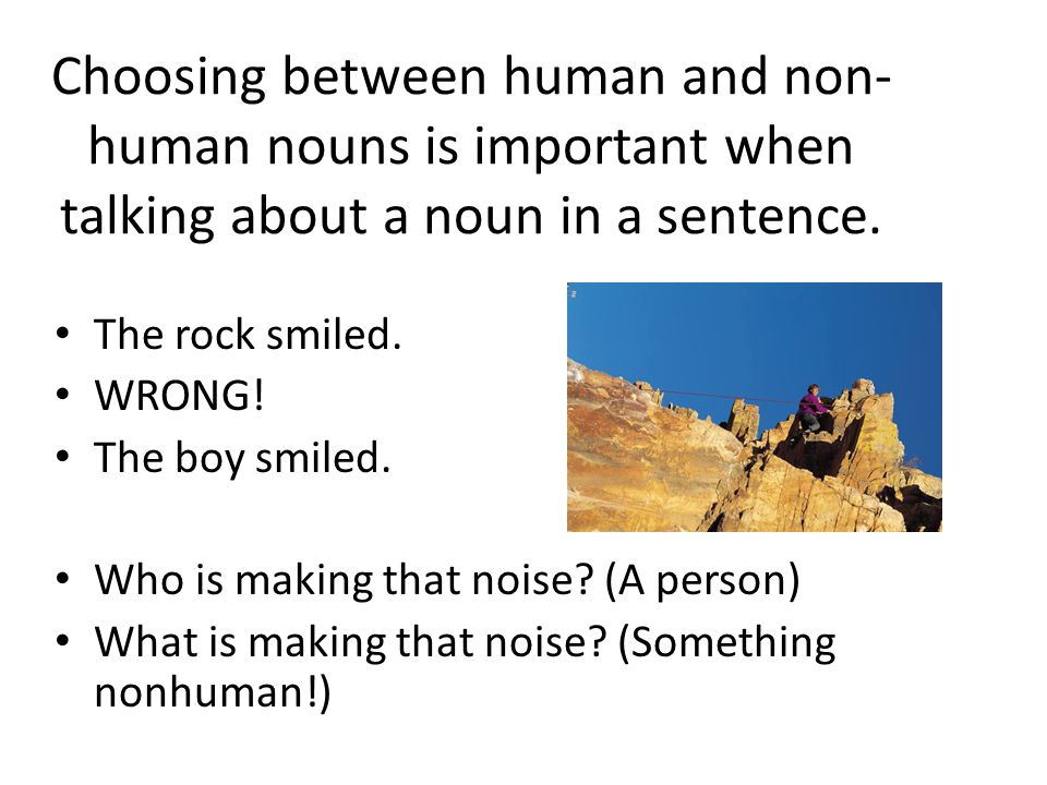 Choosing between human and non- human nouns is important when talking about a noun in a sentence.