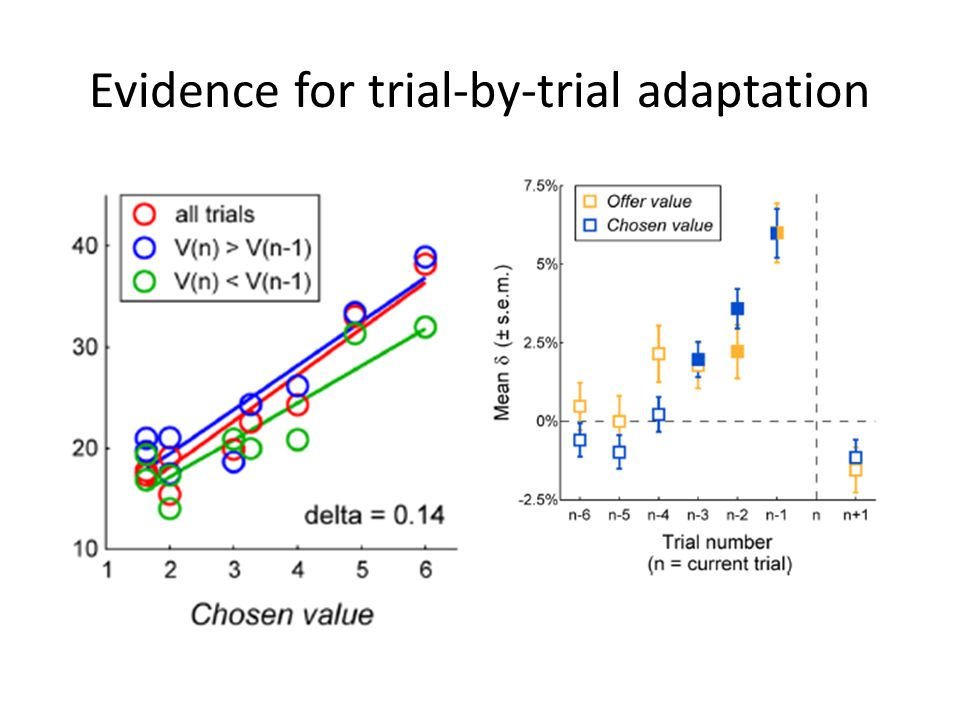 Evidence for trial-by-trial adaptation